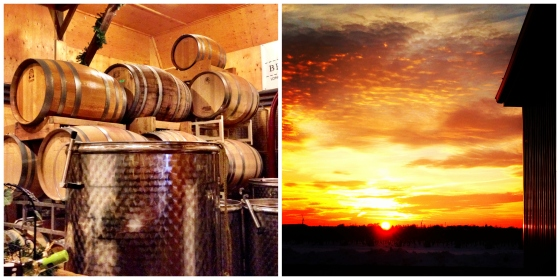 barrell sunset